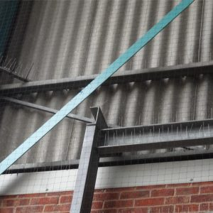 bird spikes netting 300x300 - Bird Control and Proofing