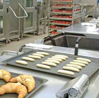 Suddenstrike Pest Control Cheshire   Domestic, Commercial, Agricultural   Croissants
